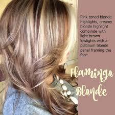 23 best hair colors images on hair colors hair color toward stunning hair themes