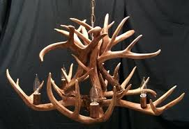 full size of cabelas whitetail antler chandelier chandeliers authentic deer with 5 lights for cabin lodge