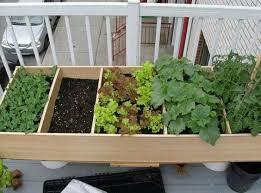 apartment patio garden. Click To Enlarge Apartment Patio Garden Vegetable Gardener