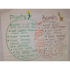 Venn Diagram Plants Comparing Living Things Plants And Animals Venn Diagram