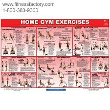 Multi Gym Wall Chart 64 Explicit Weider 2980x Exercise Chart Pdf