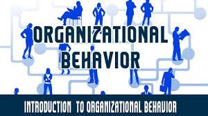 What Is Organizational Behavior Management Organizational Behavior Introduction To Organizational Behavior