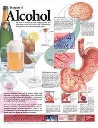 alcoholism dementia disease alcoholism a disease for mankind  alcoholism a disease for mankind essay alcoholic body shut down signs