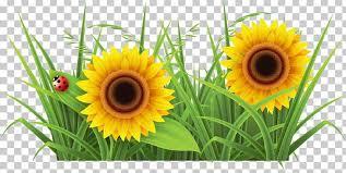 Image result for Clip art garden weeding