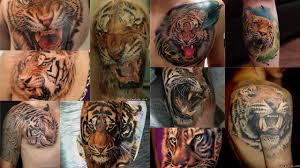 значение тату тигр клуб татуировки фото тату значения эскизы
