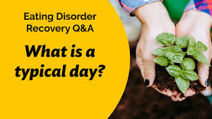 Eating Disorder Recovery Residential Care Q A Typical Day