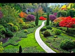 Small Picture cutting garden design YouTube