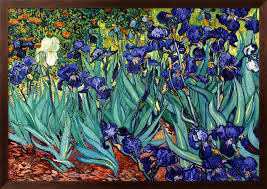 irises saint remy c 1889 by vincent van gogh