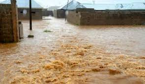 Image result for flood areas in benue