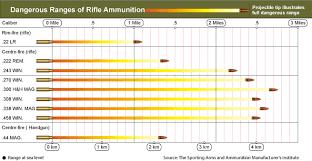 Rifle Caliber Chart Ammo And Gun Collector Rifle Caliber And Shotgun Load