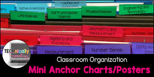 My Mini Anchor Chart How I Organize My Mini Anchor Charts Posters Technically