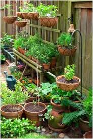 Small Picture Backyards Chic Vegetable Garden Design Plans Philippines