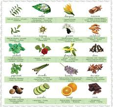 Metaphysical Properties Of Essential Oils