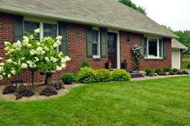 wonderful easy front yard landscaping ideas landscaping diy home