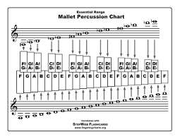 Xylophone Notes