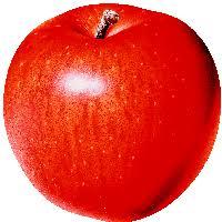 apple clipart png. png apple image clipart transparent png r