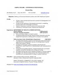 amazing resume samples for experienced it professionals resume resume examples for it professionals