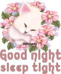 9147 good night gif image facebook