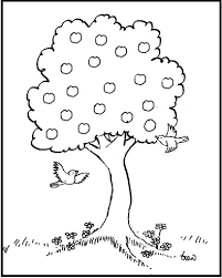 Vierjaargetijdenboom Landscape Klein