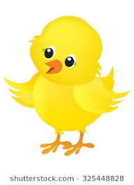 chicken clipart. Wonderful Chicken Illustration Of A Cute Little Yellow Easter Chick Isolated On White  Background Inside Chicken Clipart H