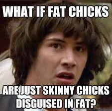 what if fat chicks are just skinny chicks disguised in fat ... via Relatably.com