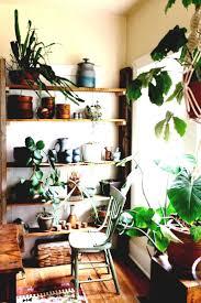 office gardening. Bohemian Urban Jungle Office Natural Shelveswood Space Best Gardening Images On Pinterest House Plants Indoor Ecddcfdecdd