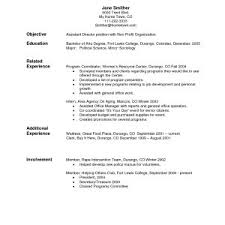 Sample Resume Objectives For Nonprofit Organizations Best Sample