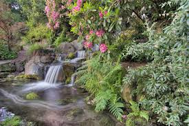 Small Picture Garden Waterfall The Gardens