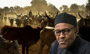 Image result for We are determined to end Farmers/Herdsmen clashes - Osinbajo