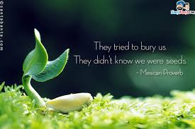 Image result for they tried to bury us they didn't know we were seeds facebook