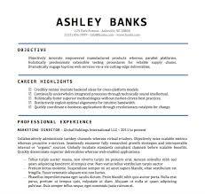 Free Microsoft Word Resume Template Amazing Resume Template Word Doc R Fancy Sample Resume Word Document Free