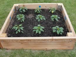 how to plan a raised garden bed dengarden