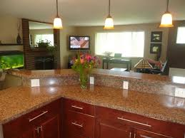Kitchen Remodel Blog Decor Impressive Inspiration