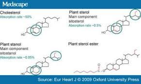 Komponen Sterol dan Stanol