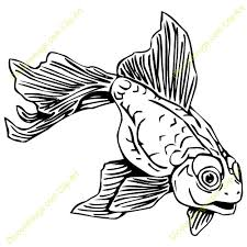 gold fish clip art black and white. Plain Gold Goldfish20clipart For Gold Fish Clip Art Black And White F