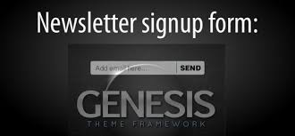How to add Newsletter Widget below the content in Genesis Child Themes genesis newsletter optin form