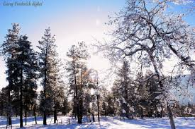 outdoor nature photography. December 15, 2011   Categories: Landscape Photography, Nature, Outdoors, Photography Tags: Outdoor Snow, Nature
