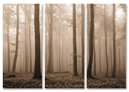 misty trees sepia triptych on sepia canvas wall art with sepia trees canvas prints 3 piece tryptch canvas art