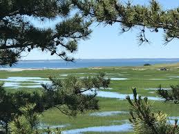 Tide Chart Cape Cod Wellfleet Water Views Nature Short Walk To Beach South Wellfleet