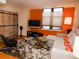 Accent Wall Electrifies Contemporary Living Room A Bright Orange Wall