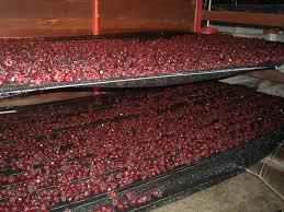 Colorante Alimentario Rojo Cochinilla L Duilawyerlosangeles