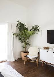 room plants x: rule  fill corners with plants cause thats what looks good in corners