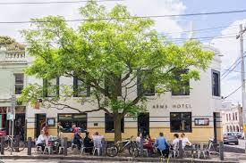 Branching out - Managing Yarra\u0027s urban forest | Your Say Yarra