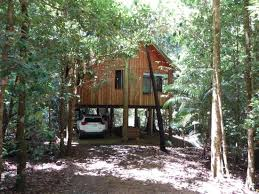 31 Tree Houses That Make The Canopy Comfy  Tree Houses Awesome The Canopy Treehouses