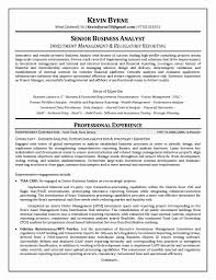Sample Resume For Entry Level Investment Banking Inspirationa