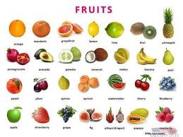 vegetables names list. Wonderful List List Of Fruit Vegetables Berries And Mushrooms In Vegetables Names