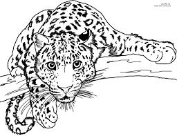 Coloring Pages Leopard Print L