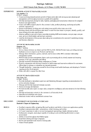 Resume Format For Accounts Manager Account Manager Sales Resume Samples Velvet Jobs 17