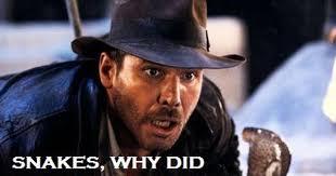 Indiana Jones Quotes New 48 Indiana Jones Quotes QuotePrism
