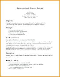 First Job Resume Example Enchanting Resume Template For Accounting Internship An First Letsdeliverco